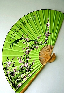 the_chinese_fan